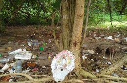 chu hao pei tree shrines singapore art artist